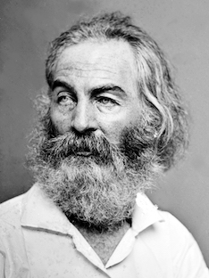 Walt Whitman photograph